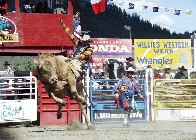 rodeo-50634_960_720.jpg